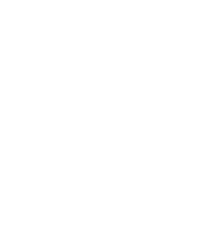 logo-nico-white-200